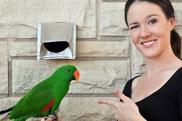 Emily and Bodhi the Parrot of Peace Frog Carpet Cleaning in front of clean dryer vent