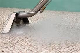 Steam cleaner head releasing steam on a carpet being cleaned by Peace Frog Carpet & Tile Cleaning in Austin
