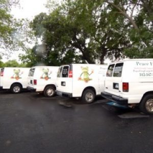 Peace Frog Service Vehicles