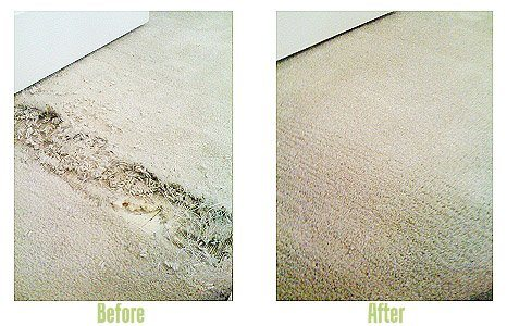 Carpet Repair - Before and After Shot
