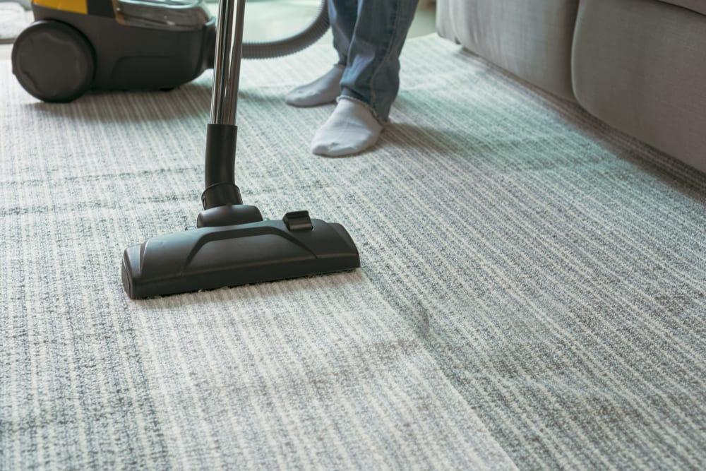 carpet cleaning near me Austin