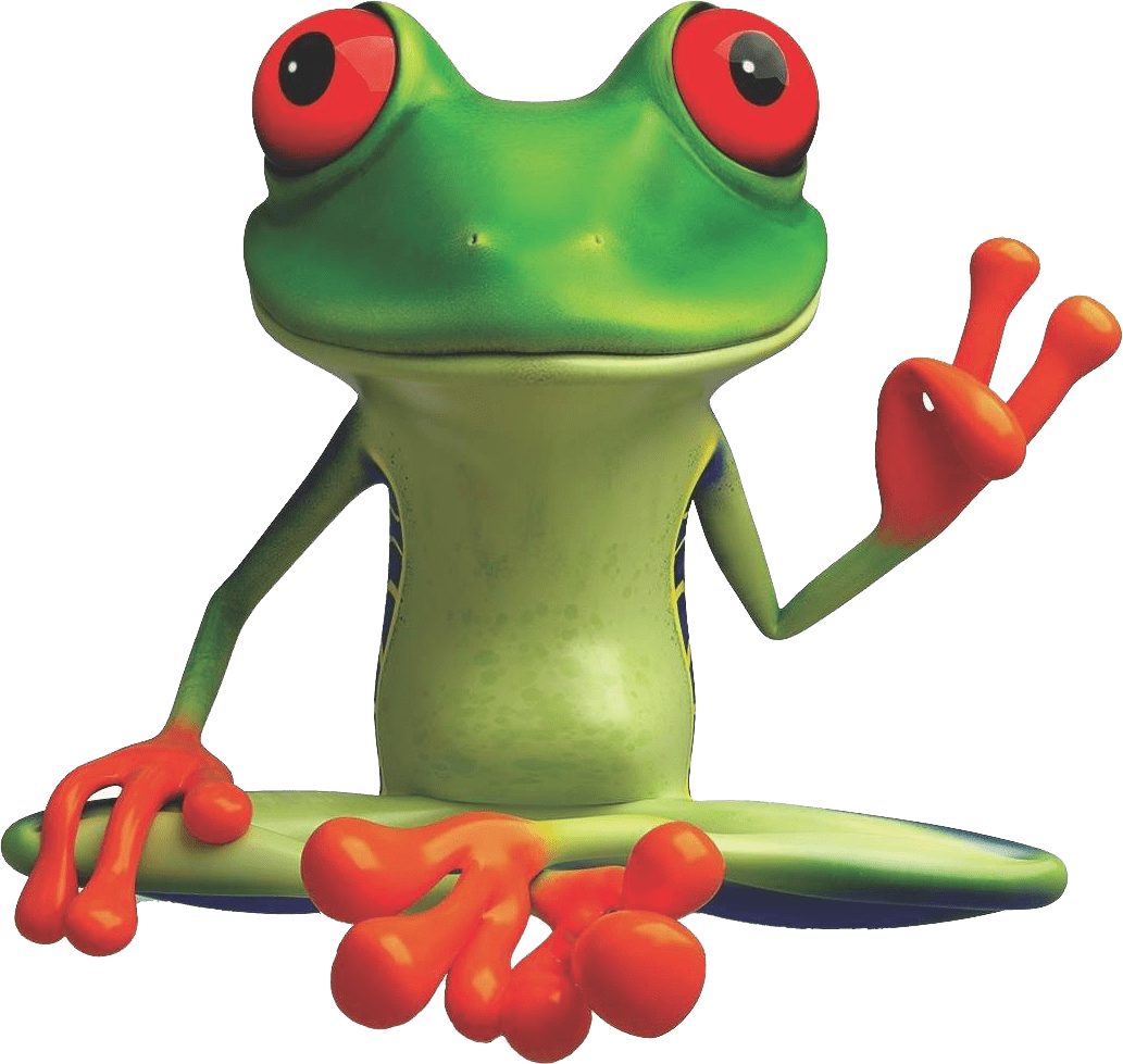 peacefrog cleaning austin