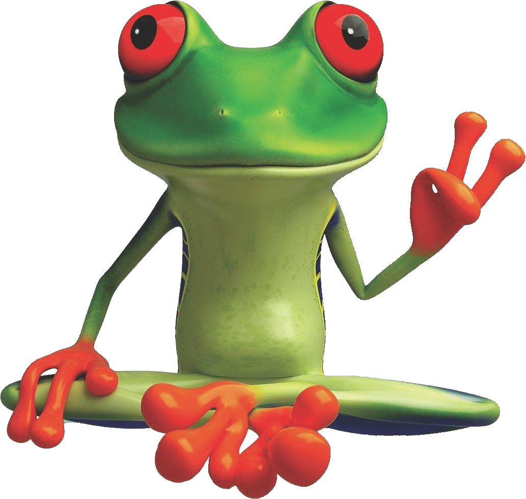 peacefrog cleaning frog austin