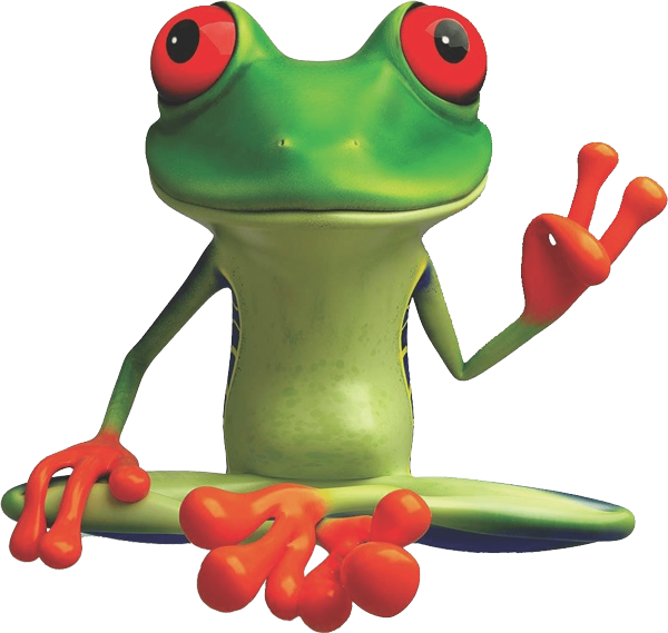 peacefrog cleaning frog austin sm